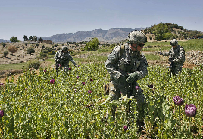 drug trafficking in afghanistan mun The narco-terrorism connection it's well known that both the taliban of afghanistan and the the link between islamist groups and drug trafficking is more.