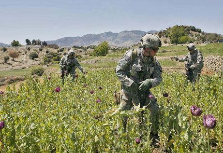US soldiers inspecting Afghan opium fields