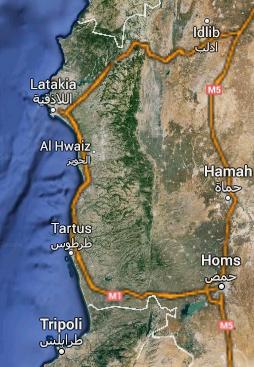 Syria Southern Katipo